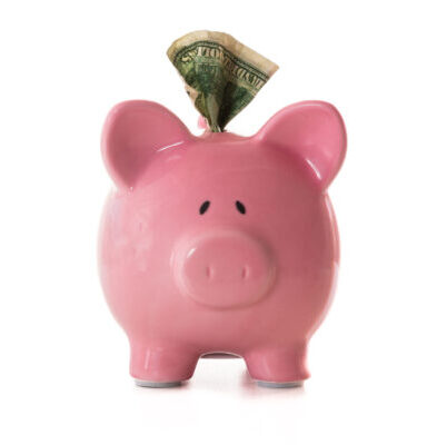 Dollar note sticking out of piggy bank on white background